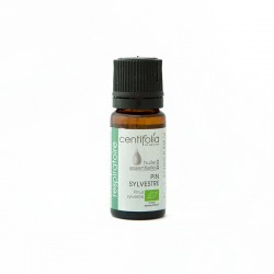 Organic SCOTS PINE essential oil: 10ml/30ml