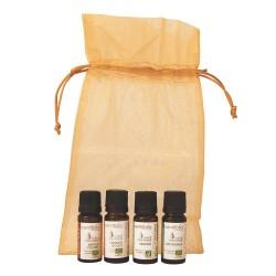 Pack huiles essentielles: Les indispensables de l'hiver