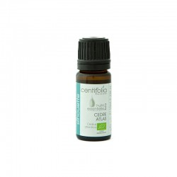 Organic ATLAS CEDAR essential oil