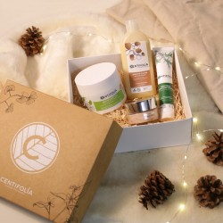 Achat Winter box Centifolia