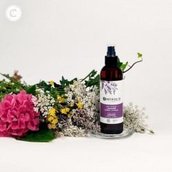 Achat Lavender organic floral water Centifolia