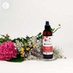 Achat Geranium organic floral water Centifolia