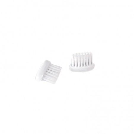 Tête rechargeable brosse à dent enfants (x2)