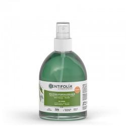 Achat Solution hydroalcoolique Centifolia