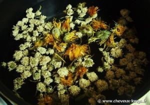 Décoction de plantes pour préparation du henné